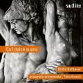 甜蜜的聲音(威尼斯文藝復興音樂) 阿欽博多合奏團ensemble arcimboldo, Ulrike Hofbauer / Co'l Dolce Suono