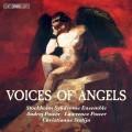 天使之聲:室內樂作品集 斯德哥爾摩症候群合奏團Voices of Angels – chamber works