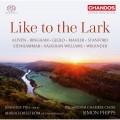 喜歡百靈鳥 珍妮佛.派克 小提琴 賽門·菲普斯 指揮 瑞典室內合唱團Simon Phipps, Jennifer Pike / Like to the Lark