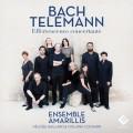 巴哈&泰勒曼:歡騰興奮的協奏曲集 / Bach & Telemann: Effervescence concertante