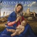 費瓦: 聖母瑪利亞彌撒曲  布拉班特合唱團The Brabant Ensemble / Fevin: Missa Ave Maria