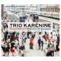 蕭士塔高維契/德佛札克/溫伯格:鋼琴三重奏 卡列妮娜三重奏Trio Karenine / Shostakovitch, Dvorak & Weinberg