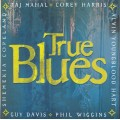 VARIOUS ARTISTS / TRUE BLUES