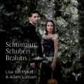 舒曼、舒伯特、布拉姆斯:中提琴作品 Schumann, Schubert, Brahms:Viola Works