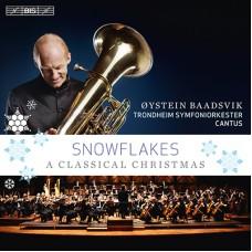 雪花紛飛~低音號的奇蹟聖誕 Snowflakes - A Classical Christmas