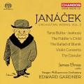 楊納傑克:管弦作品第二集 Janacek:Orchestral Works, Vol. 2 (E. Gardner, Bergen Philharmonic Orchestra, James Ehnes)