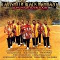 自由長征Ladysmith Black Mambazo:Long Walk to Freedom