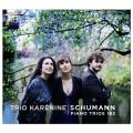 舒曼:第一、二號鋼琴三重奏 (卡列妮娜三重奏) Schumann:Piano Trios 1&2 (Trio Karenine)