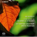 布拉姆斯、舒伯特:合唱作品  Im Herbst - choral works by Brahms and Schubert