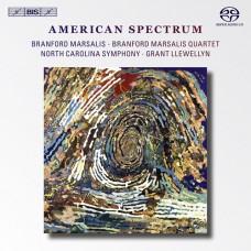 美國殘像 American Spectrum