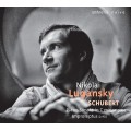舒伯特:第19號鋼琴奏鳴曲D958、四首即興曲D935 (尼可萊.魯岡斯基) Schubert :Impromptus D935, Sonata D958 (Nikolai Lugansky)