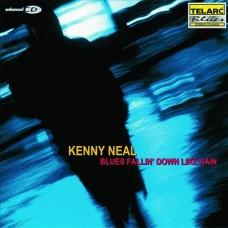 藍調如雨Kenny Neal:Blues Fallin' Down Like Rain