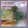 舒伯特:阿貝鳩奈琴奏鳴曲、貝多芬:夜曲 Schubert: Arpeggione Sonata Beethoven: Notturno
