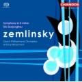 真林斯基:《D小調交響曲》/《美人魚》Zemlinsky:Die Seejungfrau ect.