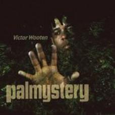 掌間神奇/ 維特•華頓  Palmystery / Victor Wooten