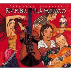 熱力舞動系列 4  熱舞佛朗明哥 Rumba Flamenco