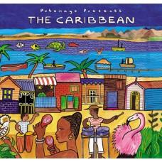 活力加勒比 The Caribbean